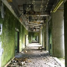 Inside the abandoned hotel on Sao Miguel island in the Azores Azores, Plan Your Trip, 10 Days, Traveling By Yourself, Abandoned, Island, Travelling, Block Island, Islands