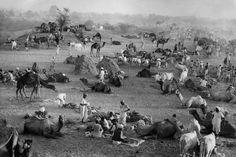 Rajasthan. Jaipur Marc Riboud