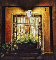 """'Tis the Season"" - Roma  #photobydperry #loves_united_lazio ##wp #Italia_super_pics #ig_italy #ig_rome #going_into_details #loves_united_roma #spgitaly #igerslazio #loves_united_places #ilikeitaly #italia_dev #pocket_Italy #gallery_of_all #total_Italy #loves_united_team #yallerslazio  #italy_hidden_gem #igw_italy #fdnf #lazio #ig_lazio_  #ig_lazio #nikontoday #unlimitedrome #my_rome  #loves_united_italia_ #thehub_italia #loves_united_europe"