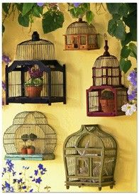 More great Birdcages..