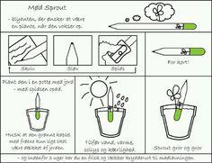 Innovation og bæredygtighed