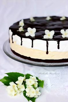Cake lick your fingers Vanilla Cake, Mousse, Cheesecake, Cooking Recipes, Pudding, Sweets, Cakes, Fingers, Yoga