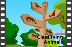 Classifying Animals Lesson Plans and Lesson Ideas   BrainPOP Educators
