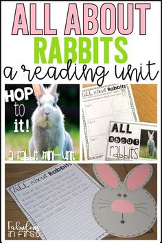 Grab this awesome nonfiction reading unit on rabbits. As well as other rabbit freebies by clicking on the link above. Reading Lessons, Reading Activities, Easter Activities, Animal Activities, Reading Strategies, Holiday Activities, Adjectives Activities, Reading Buddies, First Grade Writing