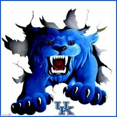 """UK WILDCATS!! Photo Description : The """"Cat"""" Breaking thru into (your space) Courtesy [Not yet/2b given/\stolen 4 now]: FcBk Profile Cover/Photo, Stephanie Toler. (...ST •