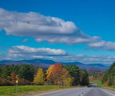 Route 100, Vermont. Best known for its fall foliage and delicious ice cream, Vermont's lush Green Mountains are also a great place for a drive, thanks to winding country roads like Route 100, which bisects the state from Stowe south to the Massachusetts border. The midsection, between the towns of Waitsfield and Weston, offers the best scenery. Where to Stop: Gifford Woods State Park. On the Green Mountain crest, west of Woodstock, this patch of primeval forest has been beautifully…