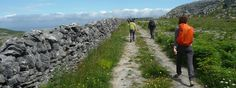 Irlanda: oceano e fiori del Burren https://hikcal.com/italy/irlanda-oceano-e-fiori-del-burren/ #thehikingcalendar #Adventure #Ambiente #Environment #Europa #Europe #Fiori #Flora #Flowers #Ireland #Irlanda #Italia #Italien #Italy #Landscape #Mediteranean #Mediterraneo #NationalPark #Natura #Nature #Ocean #Oceano #Paesaggio #Panorama #Roccia #Rock #Trek #Trekking #Wildlife