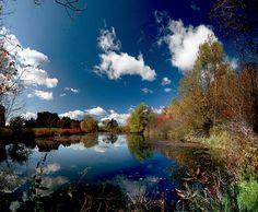 Pond in Ottawa, Ontario, Canada