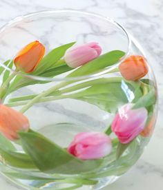Tulips decoration in Glass