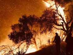 CALIFORNIA: The wildfire that began last week scorched more than acres in the Ventura area spreads north Sunday to terrorize the tony coastal communities of Santa Barbara County. California History, Southern California, Fire Tornado, California Wildfires, Santa Barbara County, No Rain, Natural Disasters, New Wave, Acre