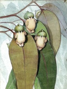 Whimsical Grimm and fairy watercolour art illustration Gum Nut Babies - illustration by May Gibbs Fairy Land, Fairy Tales, Children's Book Illustration, Book Illustrations, Australian Artists, Magical Creatures, Troll, Botanical Art, Flora