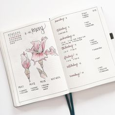 "Malin Olivia (@bulletbymalin) on Instagram: ""New week, new #bulletjournalweekly """