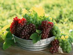 grape seed extract good for health... contains #antioxidants...#INLIFEHealthcare.