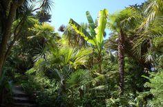 Bretagne - Île-de-Batz - Jardins Georges Delaselle