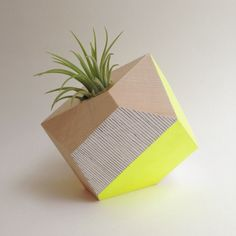 Geometric neon yellow handpainted wooden planter with air plant