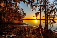 Blakeley State Park, Spanish Fort, Alabama