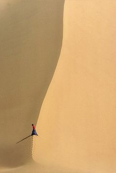 Desert du Tenere, Niger ~ by Georges Courreges
