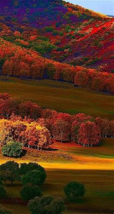 Science Discover Photo The post Photo autumn scenery appeared first on Trendy. Nature Green All Nature Amazing Nature Fall Pictures Nature Pictures Beautiful World Beautiful Places Beautiful Pictures Landscape Photography Beautiful World, Beautiful Places, Beautiful Pictures, Beautiful Photos Of Nature, Beautiful Scenery, All Nature, Amazing Nature, Nature Quotes, Fall Pictures