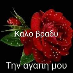 Good evening, my love! Beautiful Pink Roses, Greek Language, Good Night Quotes, Good Morning, Google, Photography, Decor, Meal Prep Recipes, Buen Dia