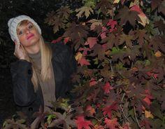 http://noemiguerriero.wordpress.com/2013/11/03/magico-autunno/