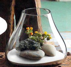 Roost Recycled Glass Bubble Terrarium, Medium – Modish Store