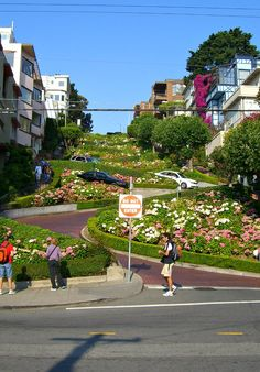 The curves of SF's Lombard Street.