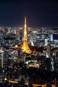 https://flic.kr/p/yGee97 | Tokyo Tower @ Roppongi Hills 52F Tokyo City View