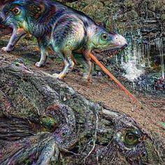 "First try with Google's ""Deep Dream""  we like it   #siberianhusky #deepdream #rocks #alps #instahusky #naturegram #trippy #instanature #huskygram #huskygram_ #therare_earth #instawolf #mountain  #bestmountainartists #nature #instadog #snapwagdogs #husky #adventure #austria #huskyworld #dog #hike #dogstergram #ilovemydog #wandern #berg #animal #tagstanature #dogsofinstagram by ace_the_siberianhuskymonkey"
