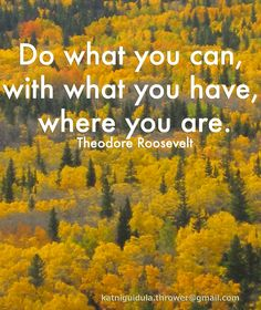 Do what you can, with what you have, where you are.  Theodore Roosevelt
