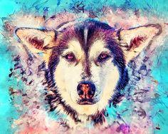Husky - JBJart