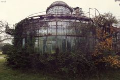 Abandoned Greenhouse  Photos Nicolas Mas