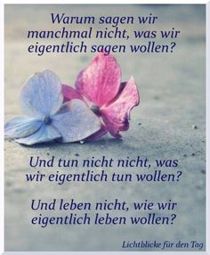 This is a good question German Quotes, Einstein, Life Quotes, This Or That Questions, Motivation, Words, Happy, Inspiration, Petra