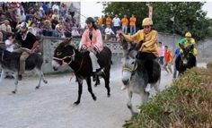 Sagra della Polenta e Palio dei Rioni - Polenta Festival and Donkey competition Oct. 26, 2014, 10 a.m. to 9 p.m., in Sassetta (Livorno); medieval reenactment, flag-throwers; at 3 p.m. the town's districts compete in a traditional donkey race; local products and crafts exhibit and sale; food booths open at noon and at 6 p.m.