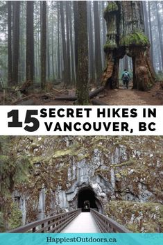 15 Unusual Hikes Near Vancouver Places To Travel, Places To See, Travel Destinations, Travel Diys, Alberta Canada, Banff Canada, Montreal, Vancouver Travel, Vancouver Island