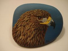 Items in Focus on Wildlife store on eBay!