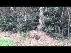 新•茂原ベース テスト - YouTube