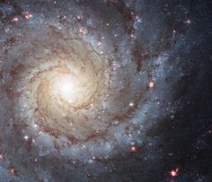 Hubble Space Telescope image of the nearby spiral galaxy M74, located roughly 32 million light-years away in the direction of the constellation Pisces, the Fish.