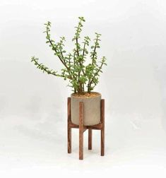 Unfamiliar modern plant stand wood on this favorite site