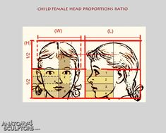 Child female head proportions ratio