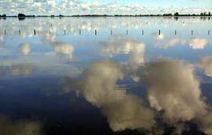 ORG XMIT: 162101_1.tif Un campo aparece totalmente anegado por las aguas, el 19 de octubre de 2001 en las cercanias de Alberti, provincia de Buenos Aires, Argentina. El noroeste de la provincia de Buenos Aires, sur de Santa FÎ y CÙrdoba y Noreste de La Pampa sufren la mayor inundaciÙn de la historia con perdidas millonarias en la produccion agropecuaria. AFP PHOTO Daniel GARCIA
