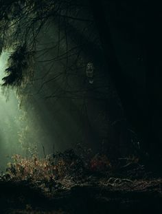 If you can see him, the owl issues a warning as he dares you to enter the enchanted forest on All Hallows' Eve ...