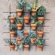 #wallpots #terracotta photo by happymundane on Instagram