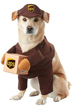 11/9/2016 -- California Costumes UPS Pal Pet Halloween Costume. Only $18.19! :)