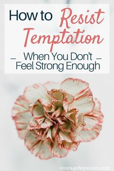 Temptation is strong, but our God is stronger. He will give us the grace and strength we need to walk upright and pure before Him. Let's dive into what it takes to resist temptation and walk in the light of Christ. #temptation #resisttemptation #christian #encouragement #godlyliving #hope #strength