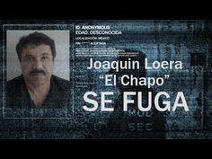 EL CHAPO Guzman se FUGA de la carcel 2015