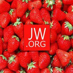 Visit us at www.jw.org
