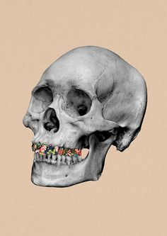 Enjoy the colorful/playful collage artworks by the English graphic designer Guy Catling. Vanitas Vanitatum, Collage Artwork, Collages, Skull Art, Graphic Illustration, Illustrations, Light In The Dark, Amazing Art, Printmaking