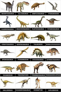 Free printable memory game with pictures of dinosaurs and their names. Simply print and cut it to make an original memory game homemade to play with family or friends Dinosaurs Names And Pictures, Names Of Dinosaurs, Dinosaurs Preschool, Jurassic World Dinosaurs, Dinosaur Activities, Jurassic Park World, Preschool Homework, Dinosaur Puzzles, Homework Ideas
