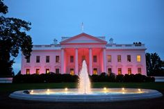October is Breast Cancer Awareness month!  Even the White House is Thinking PINK!!