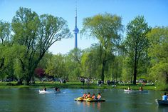 Toronto Islands with CN Tower in background